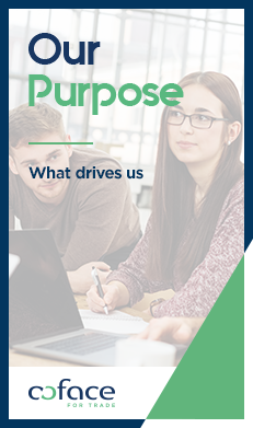 Our Purpose: what drives us
